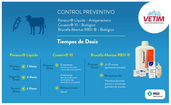 Control Preventivo